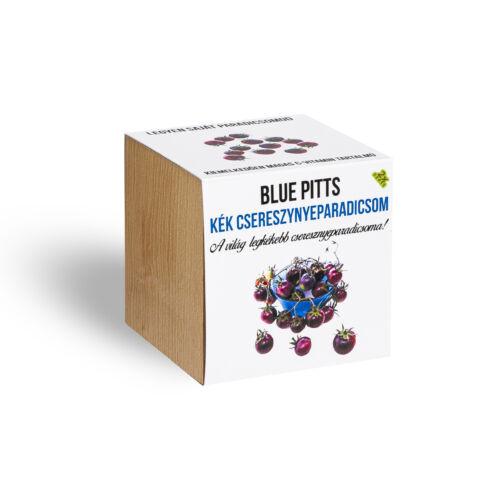 Blue pitts cseresznyeparadicsom növényem fa kaspóban